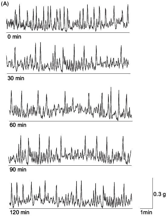 Figure 1: (A) Time-dependent control recording of the spontaneous muscular activity (SMA) of G. explanatum