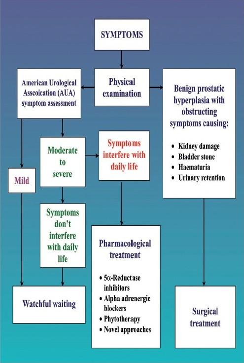 benign prostatic hyperplasia (bph) treatment Milyen fertőzések okoznak a prosztata gyulladást