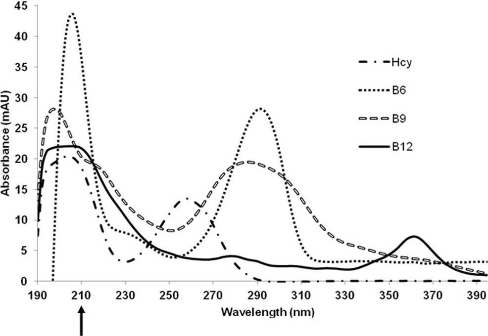 rapid resolution liquid chromatography method development