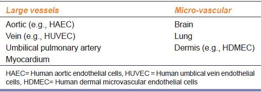 Table 3: Sources of endothelial cells