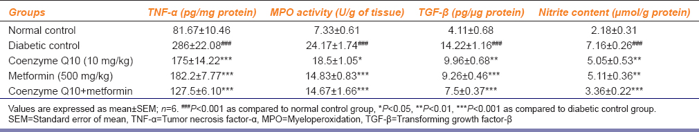 Table 4: Effect of coenzyme Q10, metformin or combination of both on TNF-α, MPO activity, TGF-β and nitrite content in renal tissue
