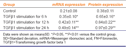 Table 1: mRNA and protein expression of FN after TGFβ1 stimulation