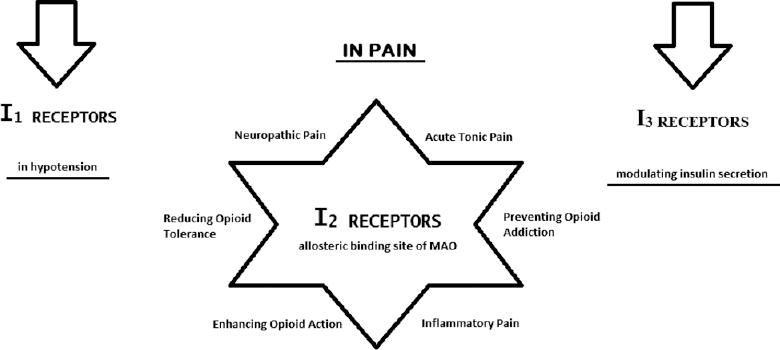 The imidazoline receptors and ligands in pain modulation Bektas N
